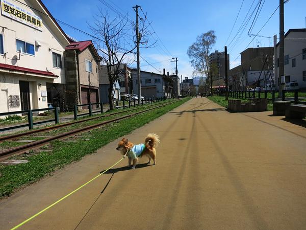 小樽散歩 手宮線跡 茶太郎