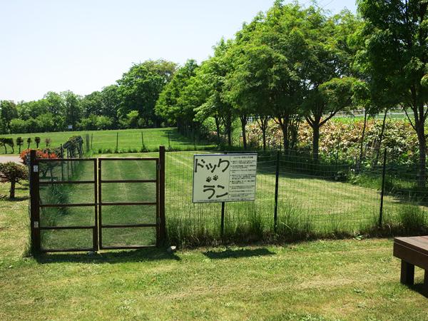 古山貯水池自然公園オートキャンプ場 ドッグラン