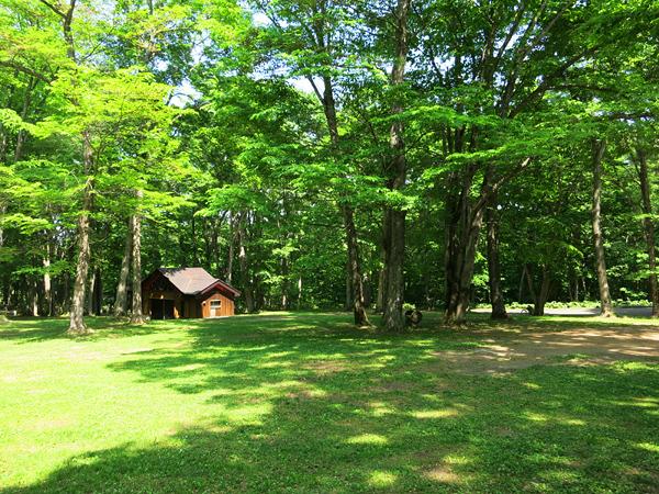 古山貯水池自然公園オートキャンプ場 フリーサイトA