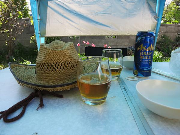 麦わら帽子 ビールで乾杯