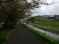 180407山科川沿いの自転車歩行者道に入る