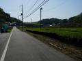 180505朝宮付近は307回避で脇道を進む