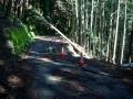 180602芋峠から吉野側の路肩崩壊