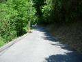 180602山田から田原に抜ける峠を上っていく