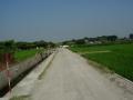 180716未舗装路を通って木津川右岸へ