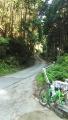 180602鹿路トンネル旧道、吉野側の激坂