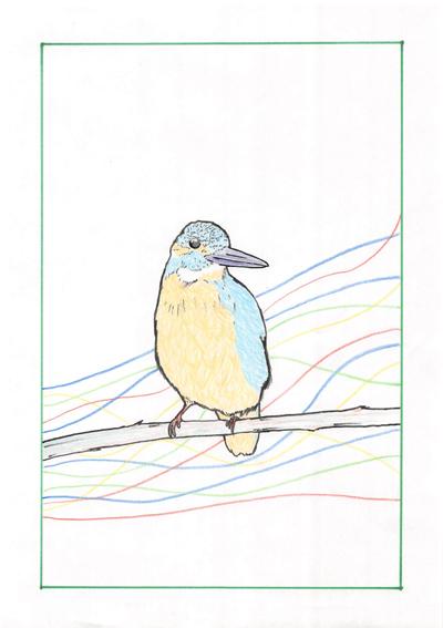 鳥さんイラスト