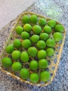 梅シロップ2