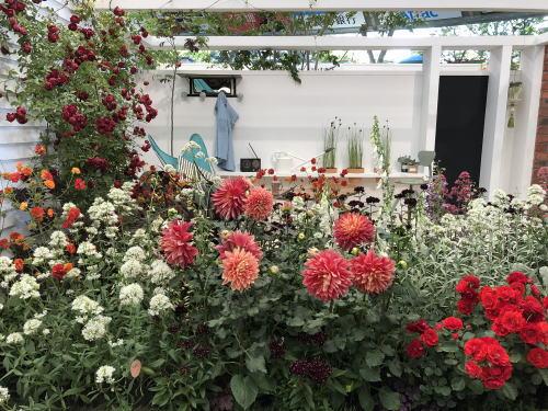ブログ18国バラ アニバーサリーガーデン3