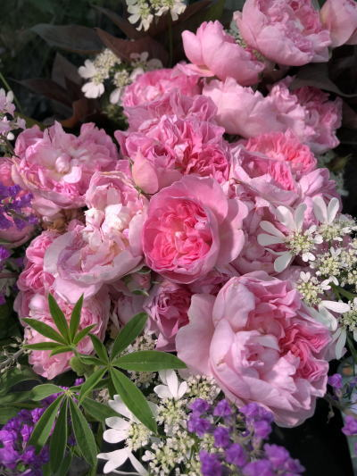 ブログ18国バラ バラの家1
