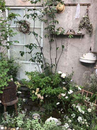 ブログ18国バラ コンテストガーデン1