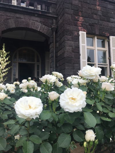 ブログ旧古河邸1プリンセスオブウェールズ
