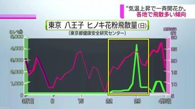 東京のヒノキ花粉の飛散パターン1