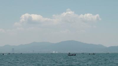 灼熱の琵琶湖南湖(7月15日12時頃)