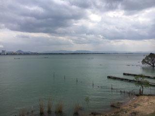 琵琶湖大橋西詰めから眺めた南湖
