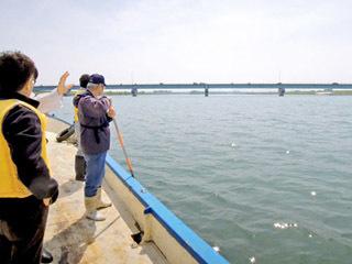 野洲川河口付近の水深を測る守山漁協の関係差ら