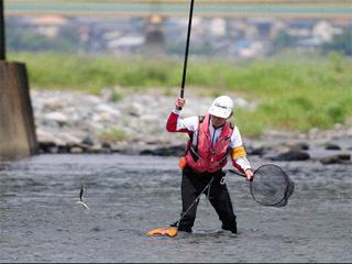 酒匂川のアユ試し釣り