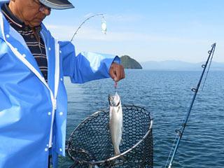 ビワマス漁