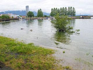 波打ち際の草地が冠水した大津市本丸町の琵琶湖岸