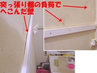shelf_06_DSC00677a.jpg