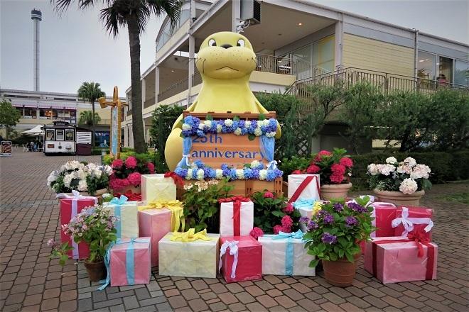 2018八景島シーパラダイスあじさい祭り(15)