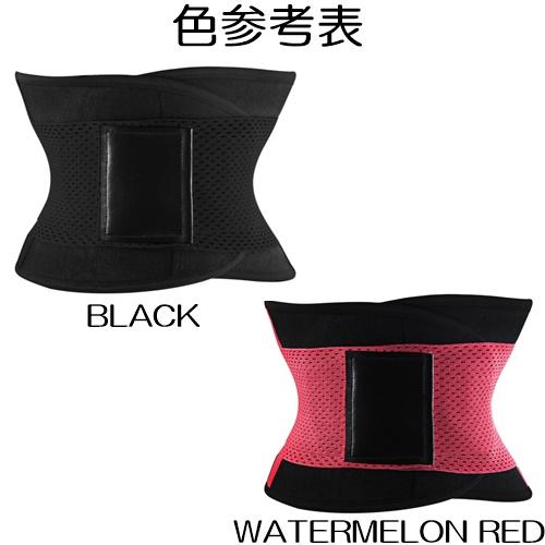 Fitness Belt (13)11111111111111111
