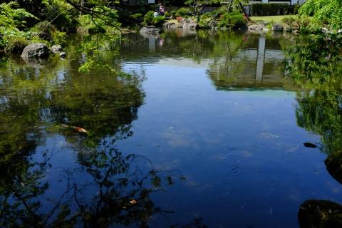 12佐野美術館池