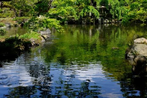 13佐野美術館池