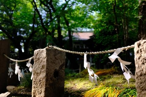 16諏訪神社しめ縄かざり
