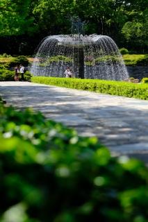06昭和記念公園