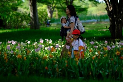15昭和記念公園