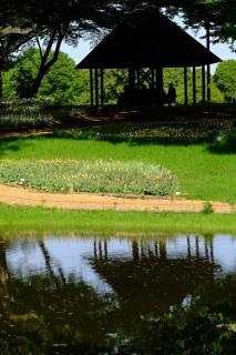 17昭和記念公園