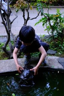 10江ノ島