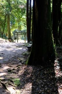 10諏訪神社