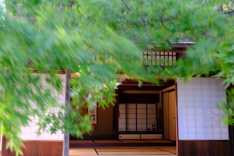29竹の丸