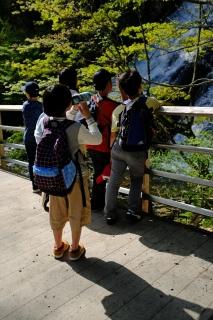 10湯滝見物