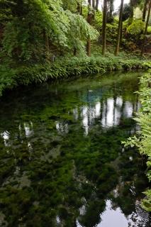 07白川水源