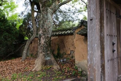27杵築城下町藩校の門