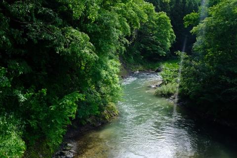 19大出の川