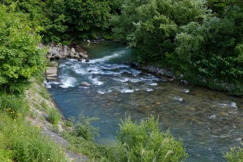 20大出の川