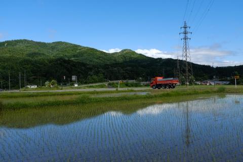 24安曇野の水田