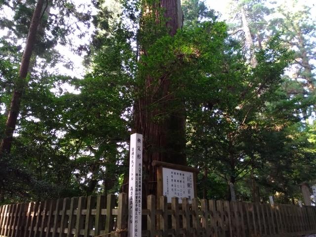 高千穂神社 (6) (640x480)