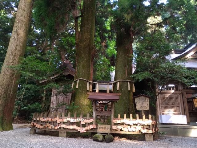 高千穂神社 (8) (640x480)