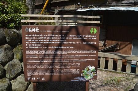 20180328修善寺日枝神社06