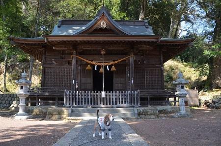 20180328修善寺日枝神社13