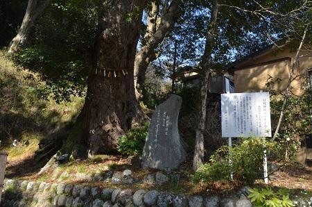 20180328修善寺日枝神社30