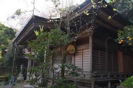 20180329新井神社21
