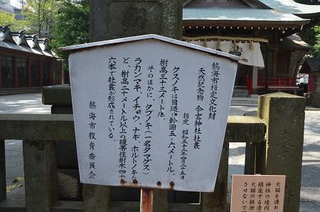 20180329今宮神社22