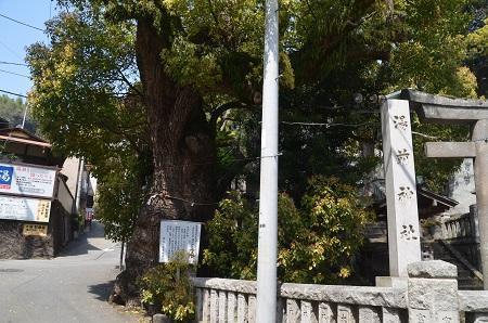 0180329湯前神社24