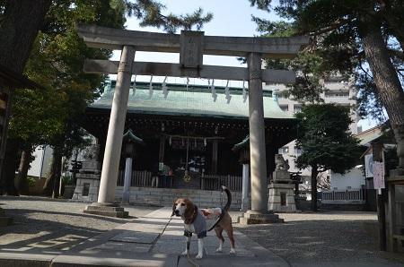 20180329松原神社10